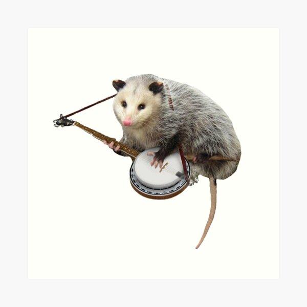 Possum Playing Banjo Art Print