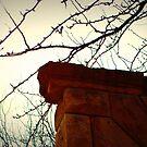 Ledge by Oranje