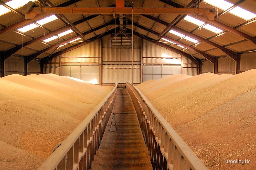 Wheat in store by woolleyfir
