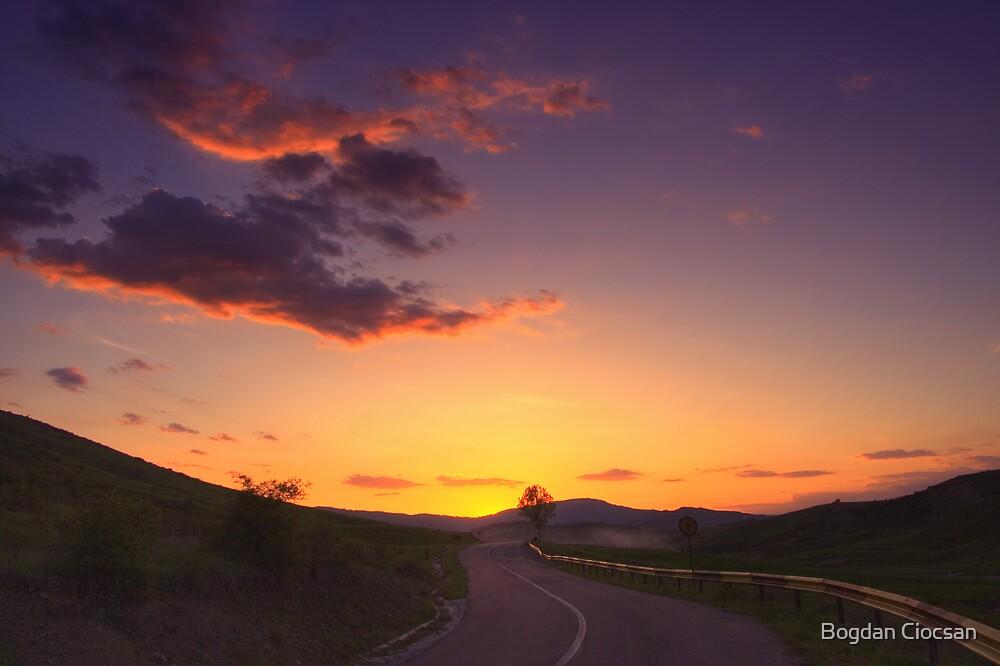 Road to freedom by Bogdan Ciocsan