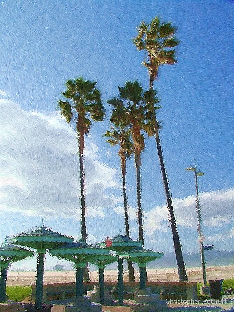 Venice Beach by Christopher Pottruff