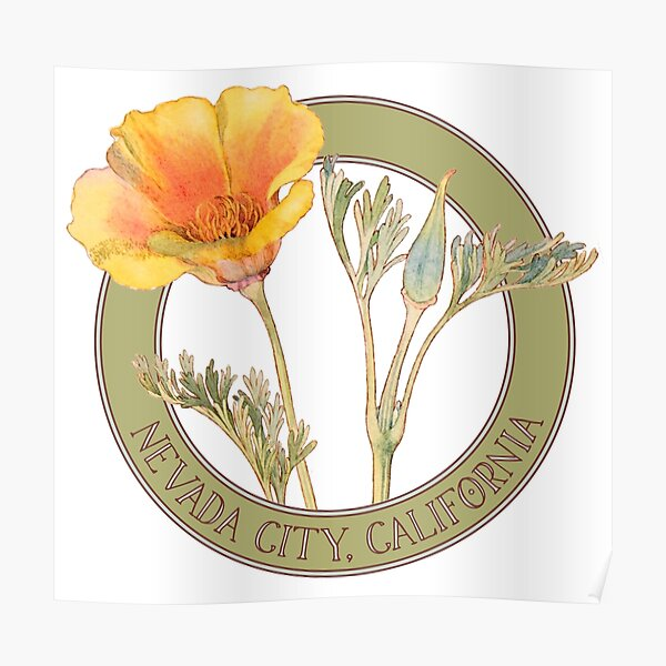 Nevada City Poppy Poster