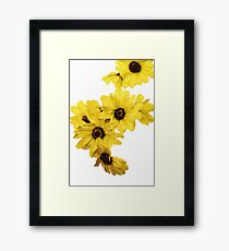 A Bunch of Yellow  Framed Print