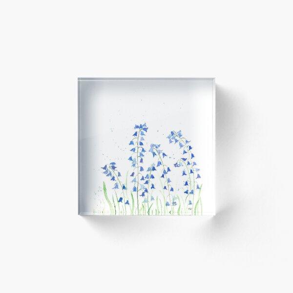 Bluebells flowers watercolours Acrylic Block