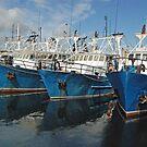 Fishing Fleet, Fremantle Harbour, Western Australia by Adrian Paul