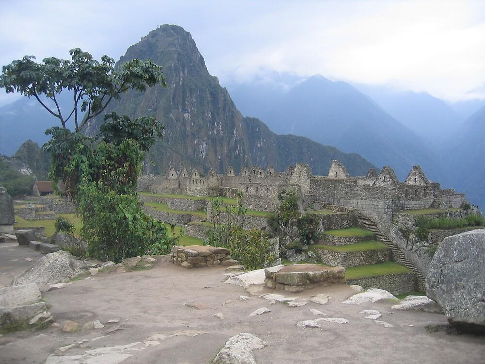 Machu Picchu at dawn by Rena77uk