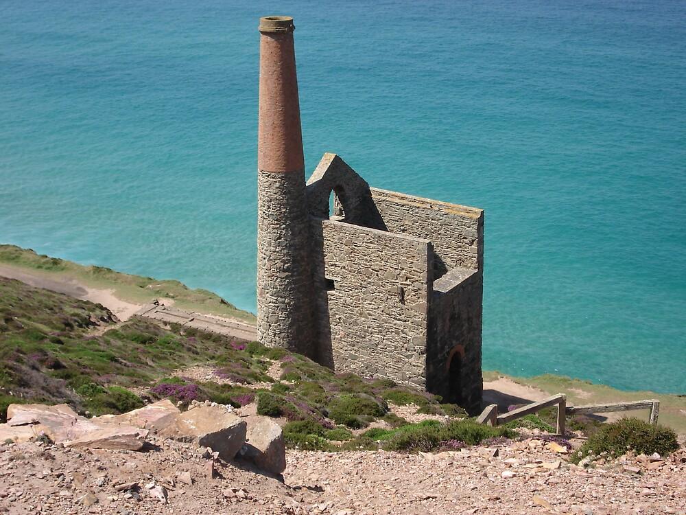 Tin Mine, St Agnes, Cornwall by Rena77uk
