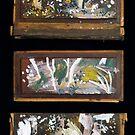 Trumper Triptych by John Douglas