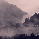 HIDDEN HILLS (mauve) / Bregenzerwald, Österreich von Daniel Coulmann