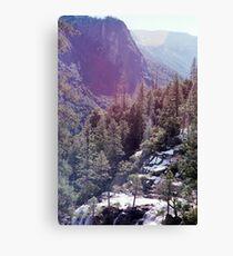Yosemite Nature  Canvas Print