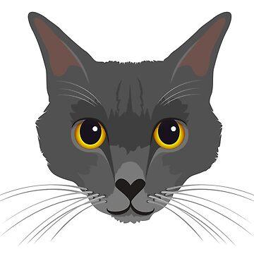 Korat cat by giddyaunt