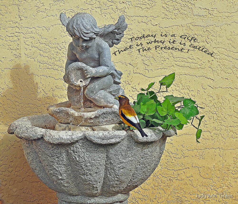 A Gift  by Judy Ann  Grant