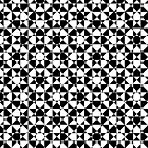 black and white mz by Falko Follert