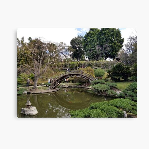 Chinese Garden at Huntington Canvas Print