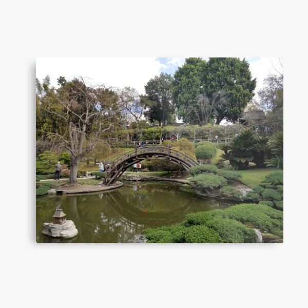Chinese Garden at Huntington Metal Print