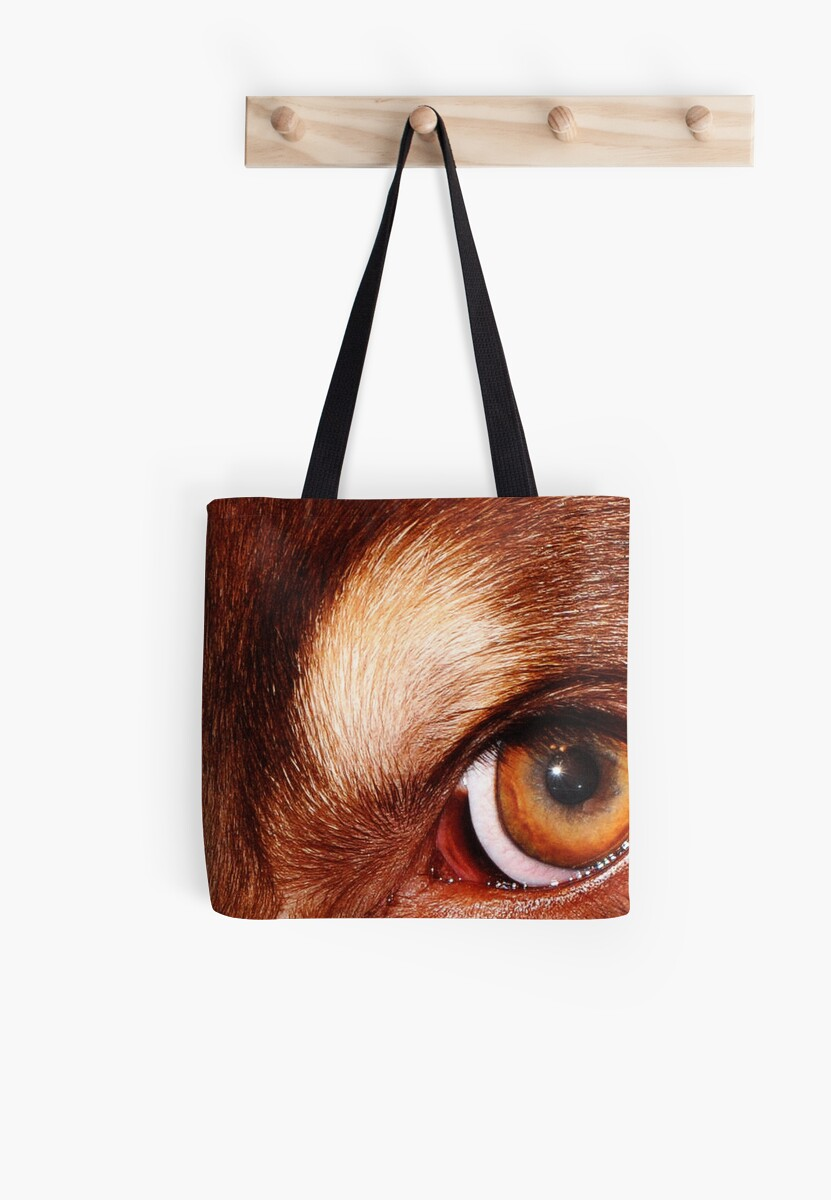 Conan's Eye by alanbrito