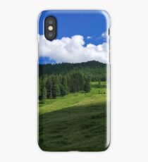 Landscape panorama - mountain forest nature iPhone Case