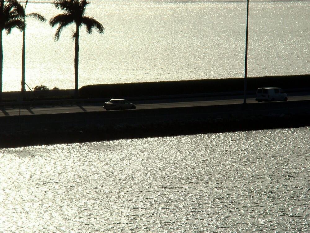 Miami Speed by Elizabeth Rodriguez
