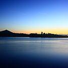 Johnstone River, Innisfail, Queensland, Australia. by Ron  Wilson