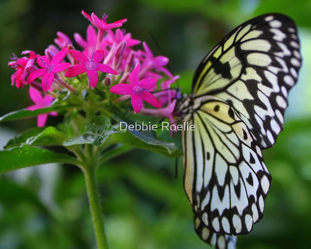 The Grace of a Butterfly by Debbie Roelle