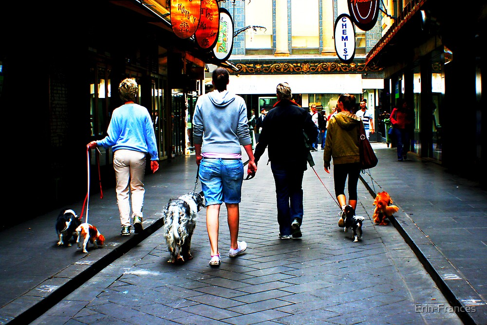 Walk the dog by Erin-Frances