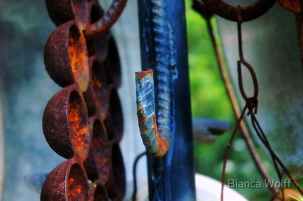 Rusted by Bianca Wolff