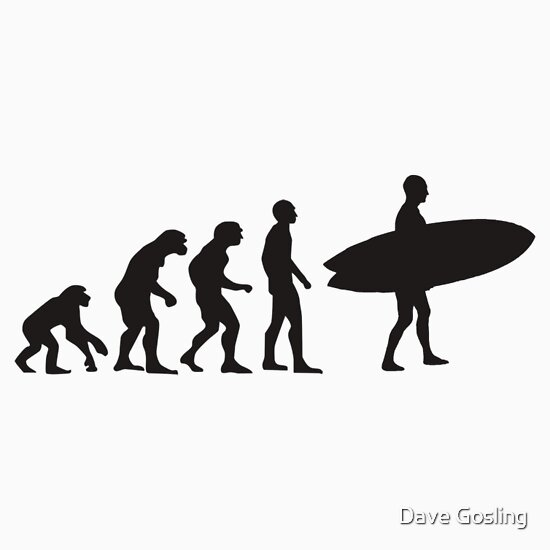 TShirtGifter presents: Surf evolution