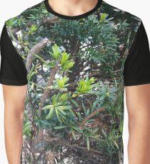 Shine, #shine, green, #green, bush, #bush, summer, #summer, lives, #lives Graphic T-Shirt