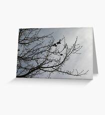 Burradoo Branches Greeting Card