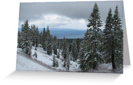 snowy lake tahoe by Florian Verhein