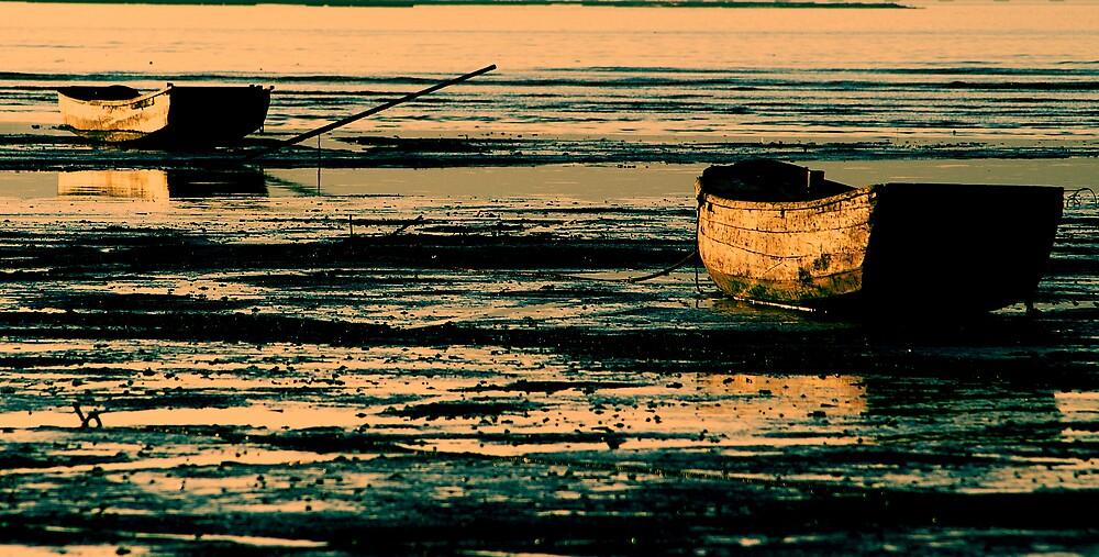 Sunset by LeoCheung