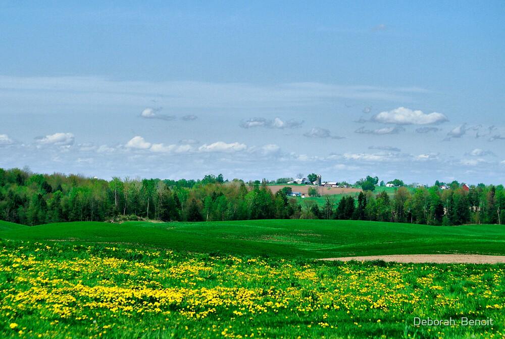 Vermont In May 2009 by Deborah  Benoit