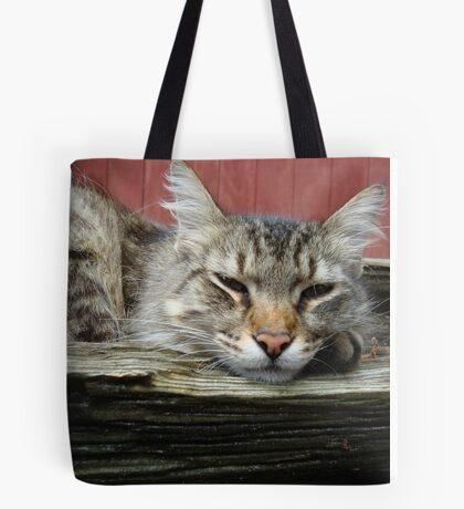 CAT IN THE CRADLE Tote Bag