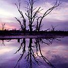 Lonely Vigil by Steve Chapple