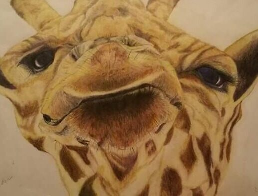 Wilbur the Giraffe by Sandi Dornhecker