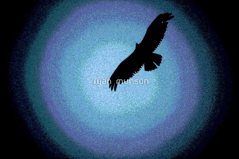 hawk by ryan  munson