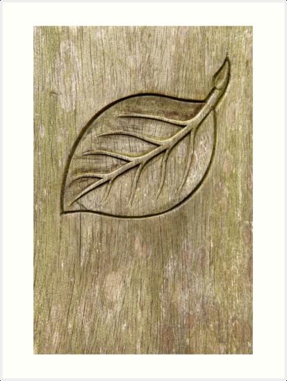 Engraved leaf by Gaspar Avila
