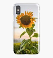 Sunflower | Photo iPhone Case