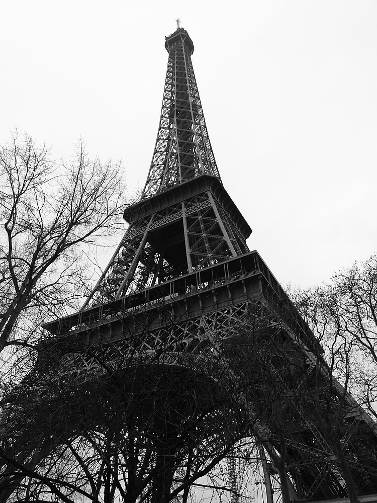 Eiffel Tower by Alex Scott