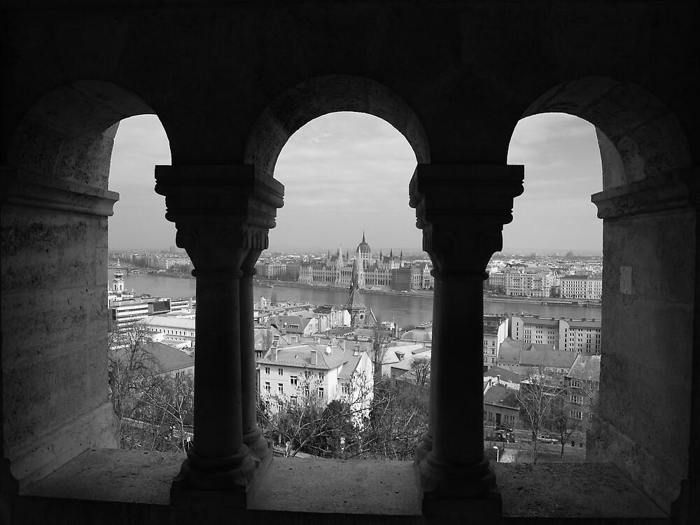 View of Budapest by Alex Scott