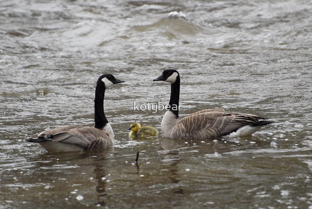 FAMILY by kotybear