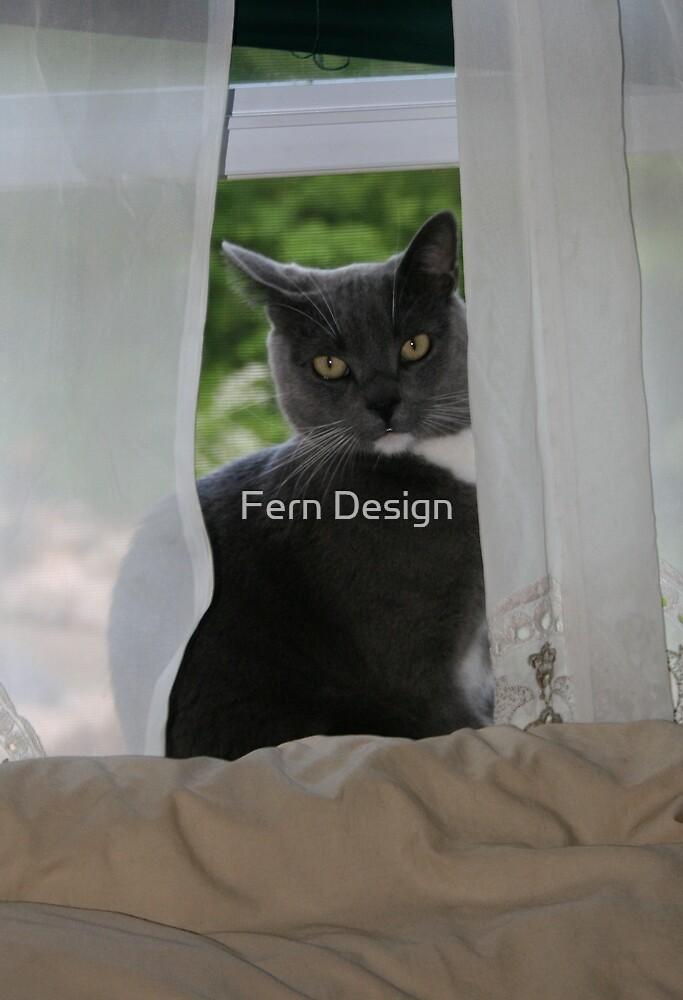 Handsome Brutus by Fern Design