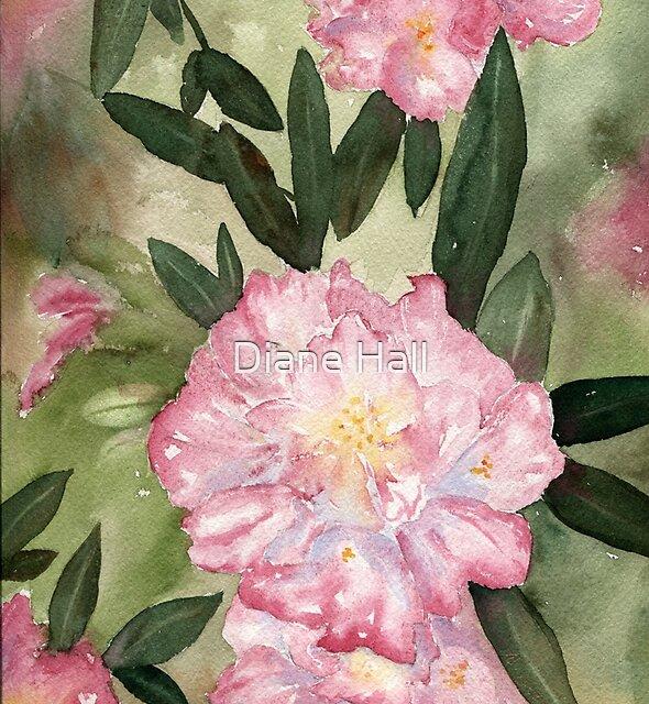 Rhody Delight by Diane Hall