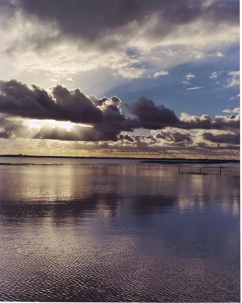 Florida Sunset by Paula Thompson