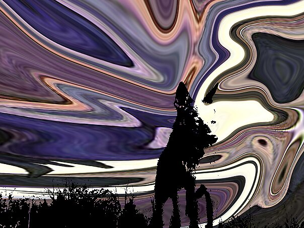 Wolf Spirit by Derek Mercey
