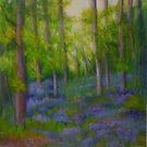 Bluebell Wood 3 by Susan Scott