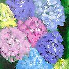 Hydrangeas  by Loretta Nash