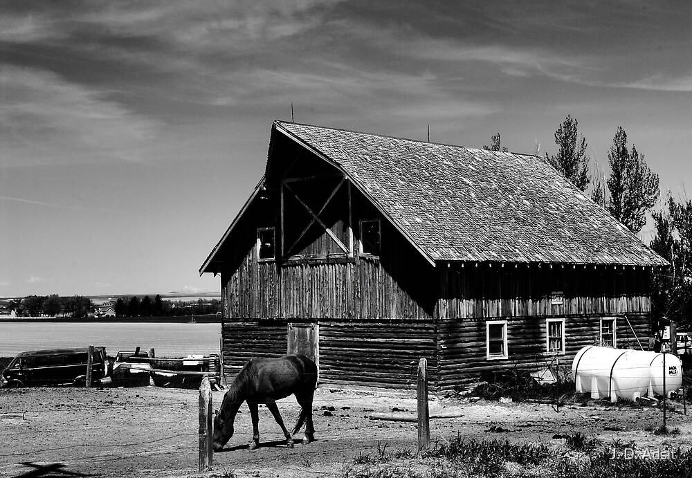 Horse Barn by J. D. Adsit