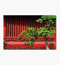Temple of Literature, Hanoi Photographic Print