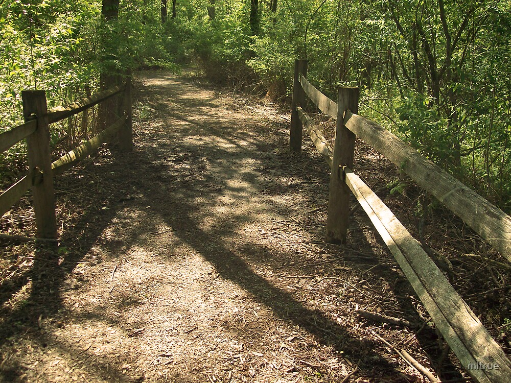 Split-Rail Trail by mltrue